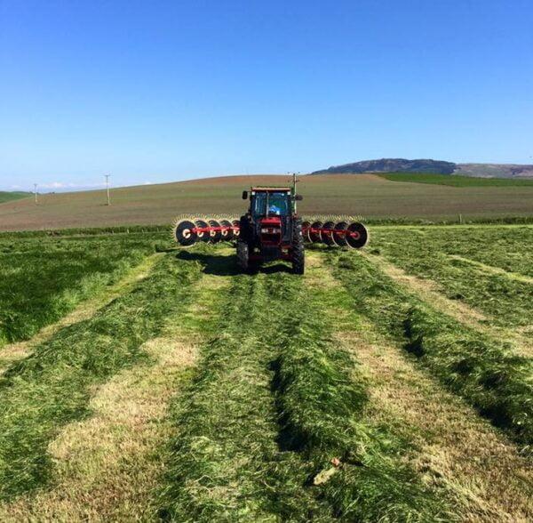 Enorossi Batrake V-Rake raking in Scotland