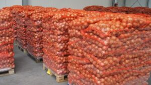 Spiders Net onion bag bulk bag
