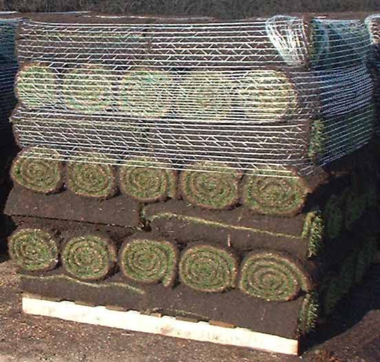 Spiders Net Turf pallet netting pallet-of-turf-400-by-400-pxc