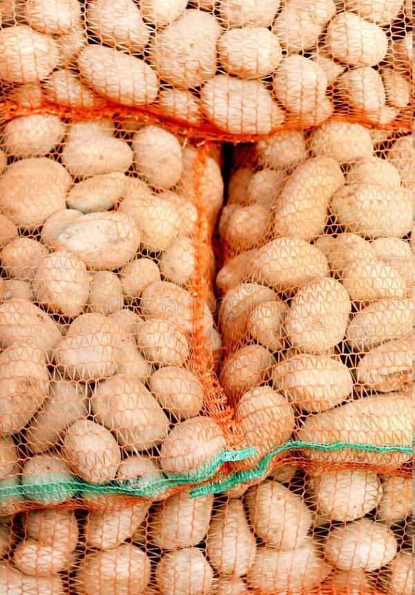 Spiders Net potatoe bag bulk bag